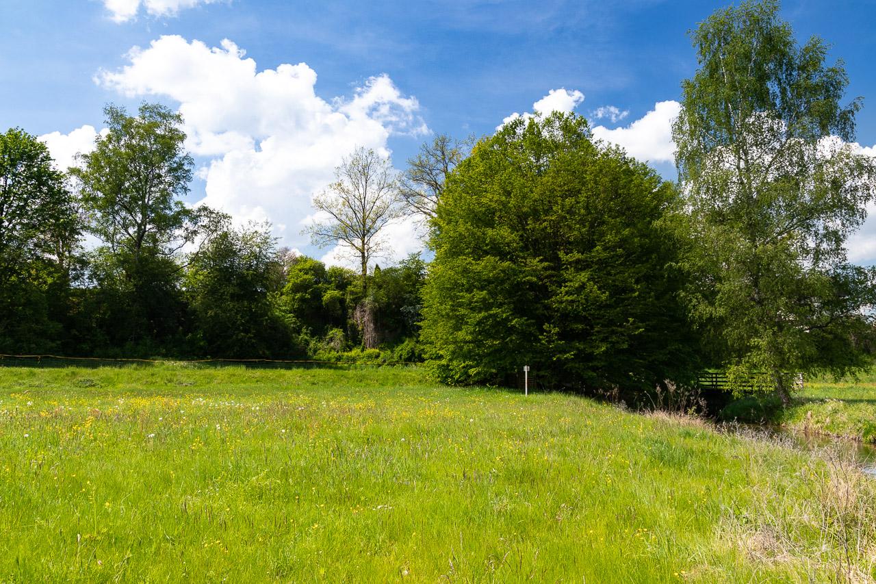 Eine Seite des Gartens von der Wiesent aus gesehen